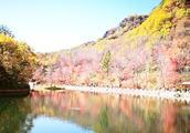隐藏在辽宁的一片秘境,秋色堪比九寨沟,美得低调却少有人知!
