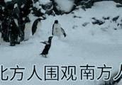 第一次见到雪的南方人,太真实了……