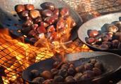板栗有干果之王的美称,对身体有哪些功效和作用,吃板栗注意什么