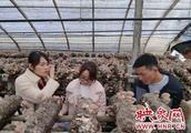 汝州市农业局开展农产品质量安全监督抽查工作