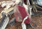 已致50人死亡!津巴布韦发生严重交通事故