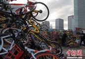 """""""无处安放""""的共享单车:摄影师寻访30城单车""""坟场"""""""
