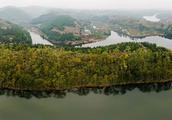 成都龙泉湖桃花岛违建拆除 保护区20余家农家乐停业