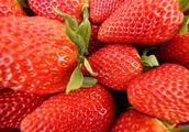 女性春天不吃此果,是你的损失,清洁牙齿,有利于减肥,皮肤更细