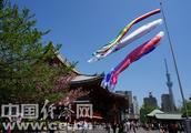 入境日本受阻怎么办?中国驻日本大使馆发布领事提醒