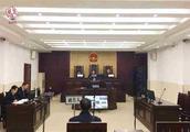湖北首判非法猎杀鸟类野生动物犯罪公益诉讼案,男子判刑又赔偿生态资源修复费