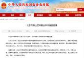 北京市房山区排查出非洲猪瘟疫情