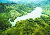 龙岩:绿色信贷,打造林业金融升级版