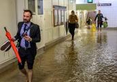 悉尼清晨下起暴雨,导致交通大乱当地民居出行非常不便