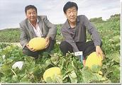 内蒙古额济纳旗农丰农资公司经理蔺发儒:对农民更得讲良心