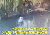 50秒丨济南大明湖内一女子欲轻生 工作人员不顾水寒刺骨跳水救人