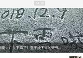"""干冷持续!哈尔滨""""雪花""""断供已38天丨想念下雪,算不算一种乡愁"""