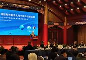 王毅外长谈中国公民海外安全:对霸凌行径绝不会坐视不管