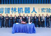 碧桂园未来五年投800亿机器人领域,与清华大学开启战略合作