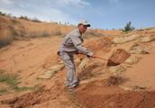 中石化加强长输管道巡护工作是从什么方面着手的?