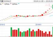 新疆交建:未开展任何燃料电池业务 股价或受冲突