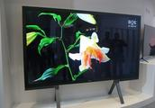 干掉了LG和三星,去年全球液晶电视面板出货量冠军是它