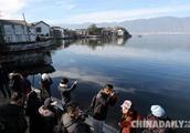云南大理洱海周边达标客栈餐厅开业