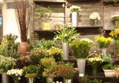 从下岗负债,她创业开花店每年营业额达80万