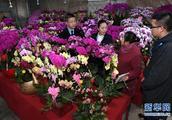 福州:严查违规收送名贵花卉