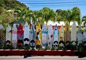 几月去夏威夷最好?这要看你喜欢呼啦舞还是尤克里里