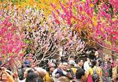 广州花园选址白云山南门,周边区域交通将迎来大提升