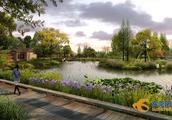 投资1.24亿!东莞年内将添一个湿地公园,就建在这里……
