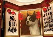 19岁败光1亿,却因为一条狗狂赚367亿,成为台湾首富!