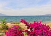 面对大海、春暖花开,云南最美的高原湖泊之一抚仙湖