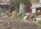 宝山、嘉定界河河道整治:宝山一侧因村民房屋开裂问题停滞