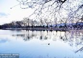 北京颐和园:春景如画赛江南