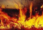 山西森林火灾原因查明,6名消防员牺牲,嫌犯被刑拘