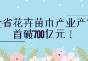 """""""种""""出来的绿色财富——全省花卉苗木产业产值首破700亿元!"""
