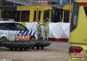 荷兰枪击事件致3死多伤 嫌犯或因家庭纠纷而开枪