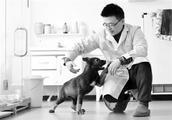 全国首只克隆警犬诞生