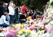新西兰枪击案嫌犯或被终身监禁 狱中不能读报看电视