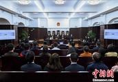 中国法院首次适用示范判决机制审理证券群体性纠纷示范案件