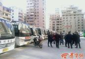 黑车长期在客运站外非法拉客 镇安56辆通村班车停运一天