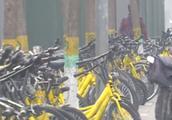 ofo内部反腐邮件曝光:前员工偷卖价值超过200万单车被逮捕!