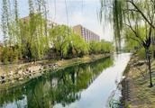 行进在春天里|北京东城二环城市绿廊设13个景观节点