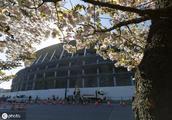 和鸟巢比谁好看?东京奥运会主场馆竣工在即,长得像汉堡