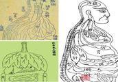 中国远古时代就有经验丰富的解剖学
