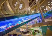 广州10个特色商场,海底世界、高空滑索、飞天梯都有...而且免费!