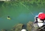 有幸钓过这种鱼的人非富即贵,家里没矿就别妄想能有机会去钓
