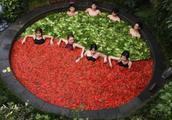 """杭州有个特殊的火锅,美女和肉片同时""""煮"""",美食温泉两不耽误"""