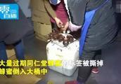 同仁堂被曝回收过期蜂蜜:有几万瓶,涉嫌更改日期!官方回应来了