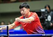 2019亚洲杯,樊振东大战张本智和,马龙VS丹羽孝希
