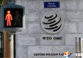 """日本又想""""三国鼎力""""?欲一纸诉将其告上WTO,不是中国,那是?"""