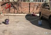 油漆桶、反光锥、小木棍!哈尔滨香坊区环卫小区院内私设挡车桩,方便自己影响大家