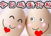 鸡蛋:今日鸡蛋价格?2019.1.20鸡蛋价格行情继续调整!